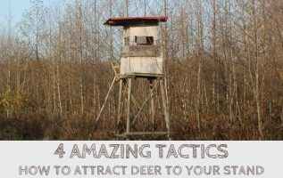 How to Attract Deer to Your Stand