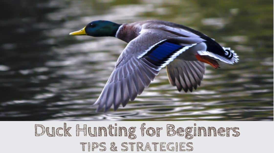 https://outdoorstack.com/wp-content/uploads/2017/11/Duck-Hunting.jpg