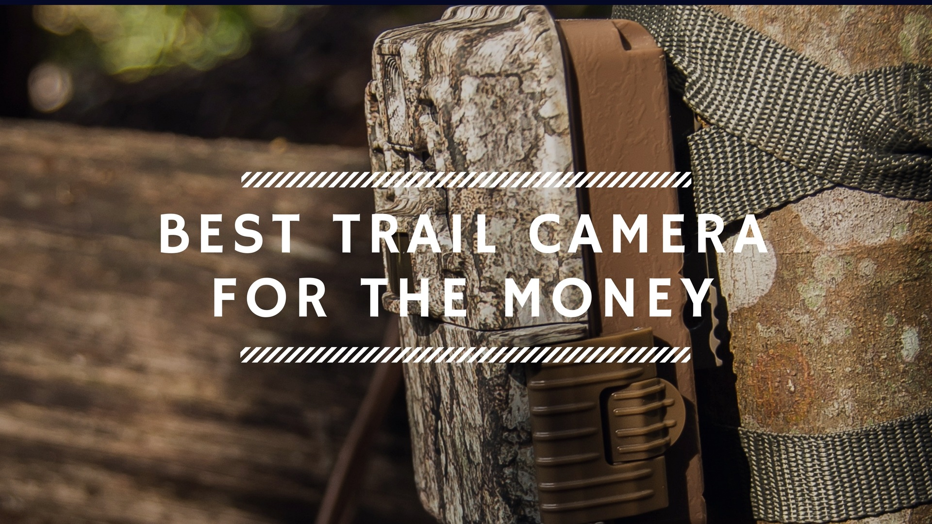 https://outdoorstack.com/wp-content/uploads/2017/12/Best-Trail-Camera-For-The-Money.jpg