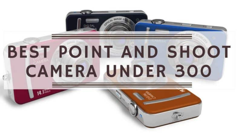 You are currently viewing Best Point and Shoot Cameras Under $300