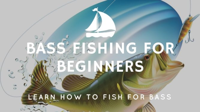 Bass Fishing for Beginners. Learn How to Fish for Bass.