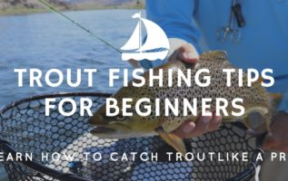 Trout Fishing Tips For Beginners