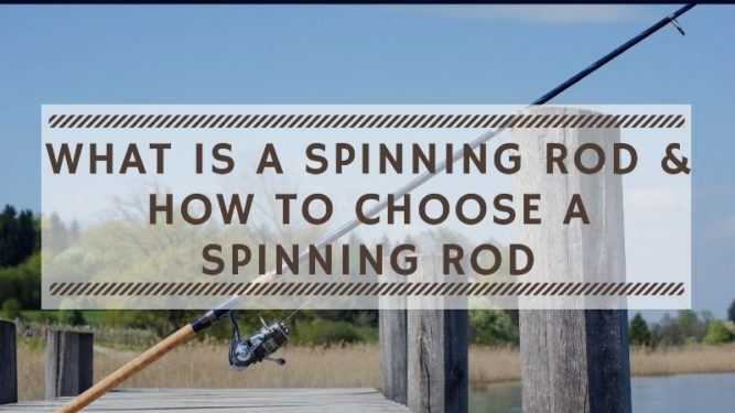 What is a Spinning Rod and How to Choose a Spinning Rod