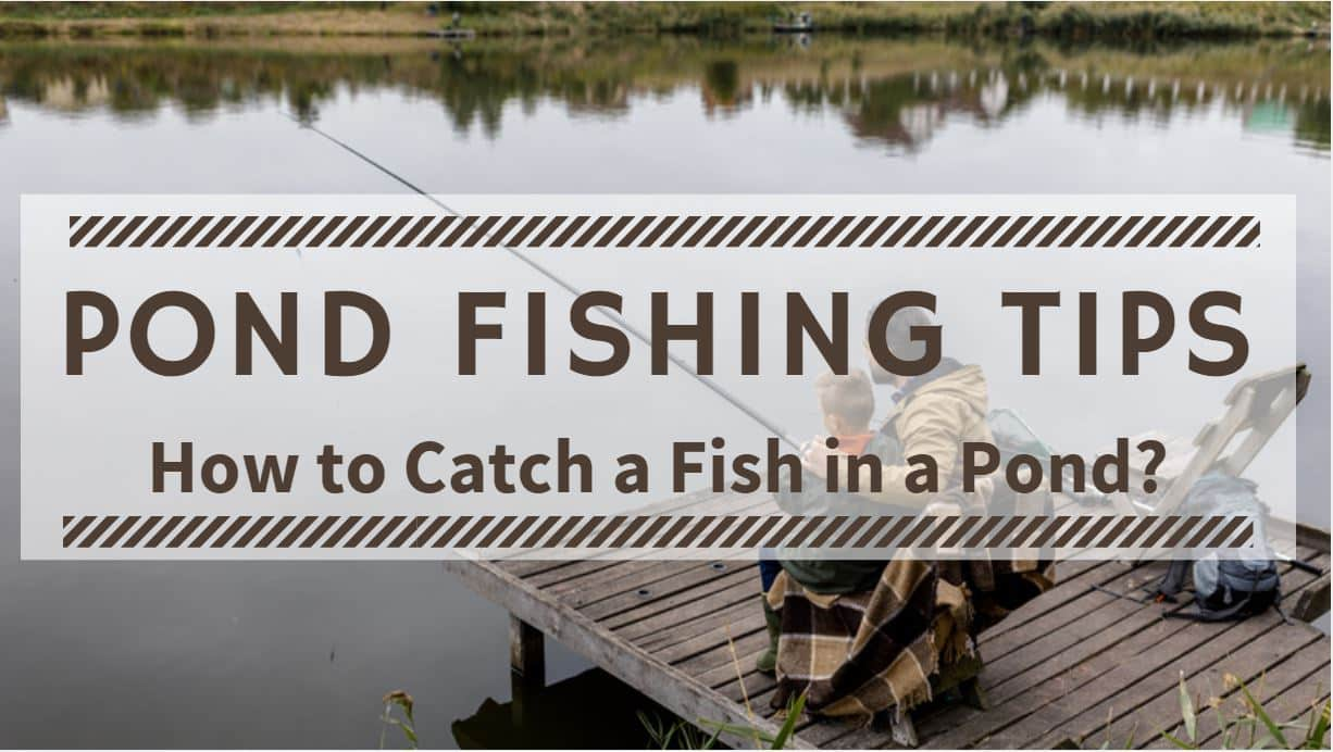 You are currently viewing Pond Fishing Tips – How to Catch a Fish in a Pond