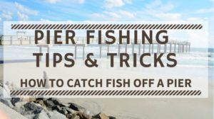 Read more about the article Pier Fishing Tips & Tricks – How to Catch Fish off a Pier
