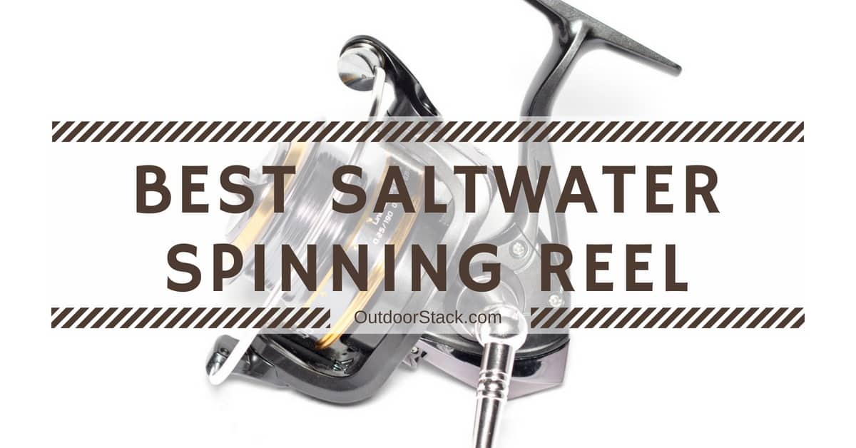 You are currently viewing 12 Best Saltwater Spinning Reels Under $200