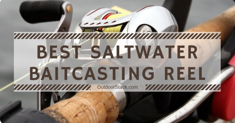 You are currently viewing Best Saltwater Baitcasting Reels