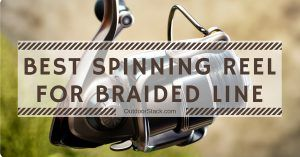Read more about the article Best Spinning Reel for Braided Line