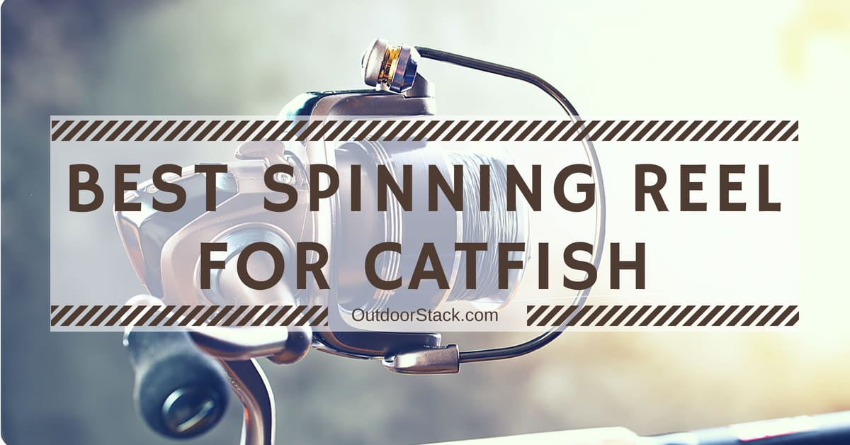 You are currently viewing 5 Best Catfish Spinning Reel Reviews