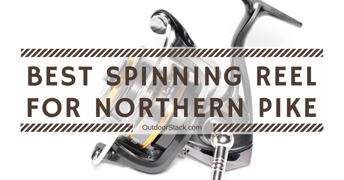 You are currently viewing Best Spinning Reel for Northern Pike