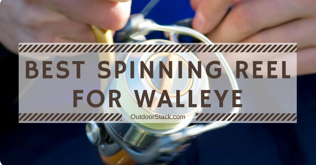 You are currently viewing Best Spinning Reel for Walleye