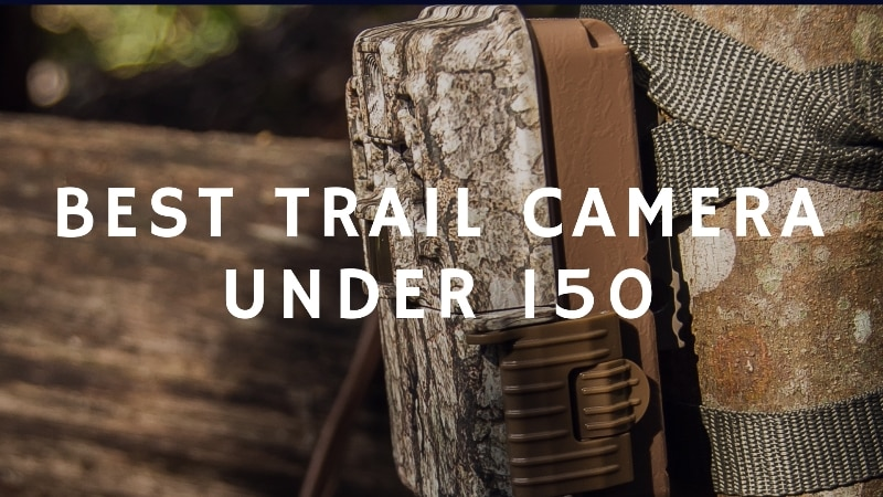Best Trail Cameras Under 150 of 2019 – Top 5 Picks & Reviews